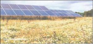 Aanleg zonne-akker in Sleen