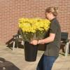 Bloemen voor De Schoel