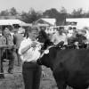 Zuidenveldtentoonstelling Sleen 1984