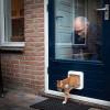 In Sleen zijn opvallend veel katten spoorloos