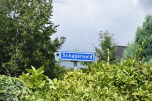 Straat in beeld: Schapenveld