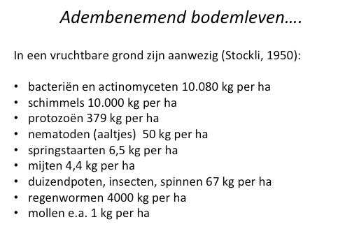 adembenemend.png